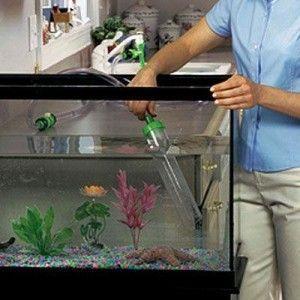 Limpiando el acuario