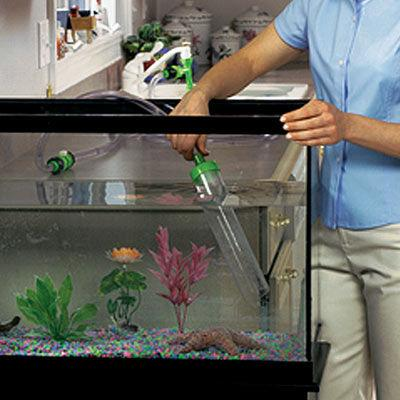 Como limpiar un acuario - Como limpiar la casa a fondo ...