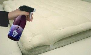 Spray en colchón
