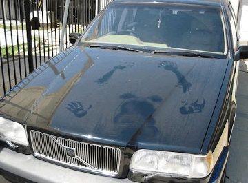 C mo limpiar un coche for Como limpiar el horno muy sucio