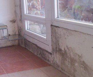 Como limpiar las ventanas - Como limpiar hongos de la pared ...